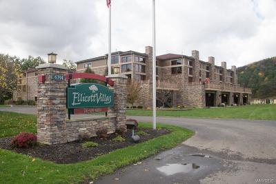 Ellicottville Condo/Townhouse A-Active: 6394 Route 242e Highway #25