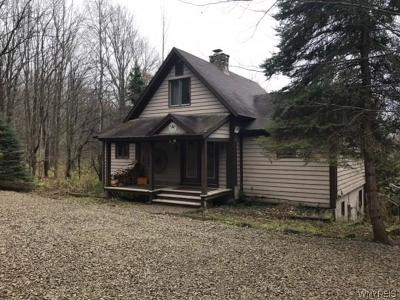 Ellicottville Single Family Home U-Under Contract: 6895 Ridge Road