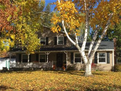 Orchard Park Single Family Home A-Active: 32 Sleepy Hollow Lane