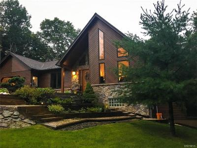 Erie County Single Family Home A-Active: 6269 Hillcroft Drive