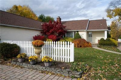 Erie County Single Family Home A-Active: 9890 Main Street