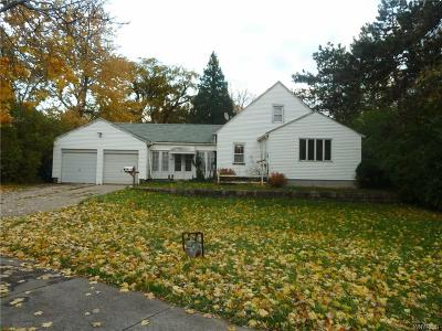 Amherst Single Family Home A-Active: 891 Millersport Highway