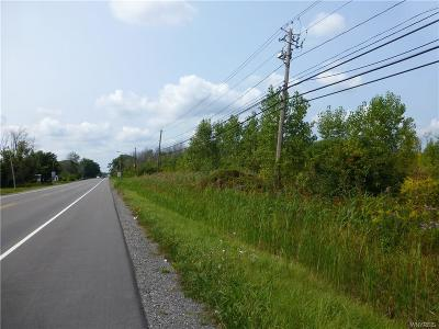 Niagara Falls Residential Lots & Land A-Active: V/L Porter Road North