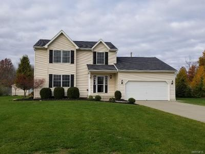 Erie County Single Family Home A-Active: 7180 Goodrich Road