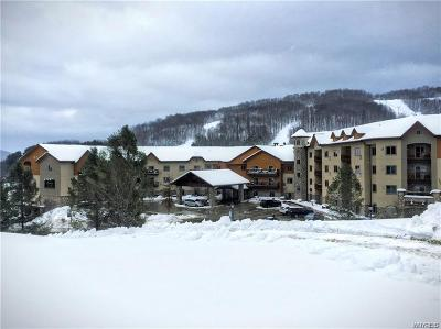 Ellicottville Condo/Townhouse A-Active: 6557 Holiday Valley Rd. 501/503-4 Tamarack #501/503-
