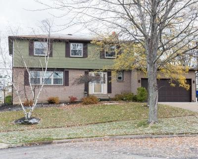 Erie County Single Family Home A-Active: 117 Hemlock Drive