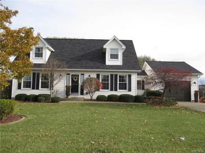 Grand Island Single Family Home A-Active: 351 Cardinal Lane