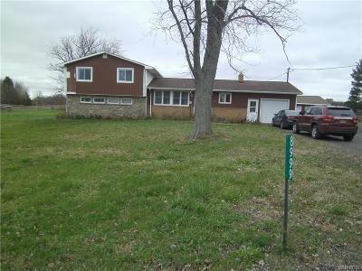 Niagara County Single Family Home A-Active: 8999 Pearson Road