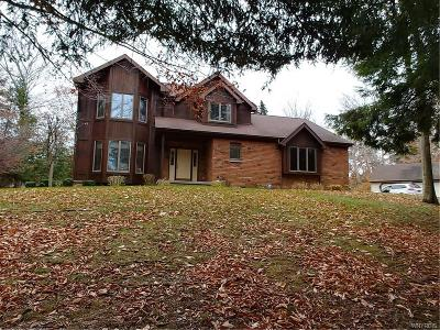 Angola Single Family Home A-Active: 8685 Old Mill Run Road