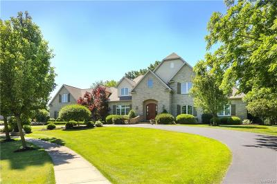 Erie County Single Family Home A-Active: 207 Village Pointe Lane