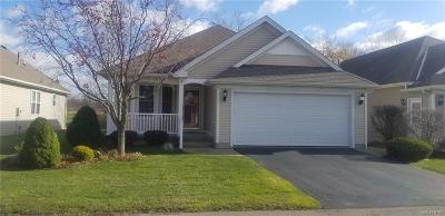 Cheektowaga Single Family Home U-Under Contract: 8 Parwood Trail