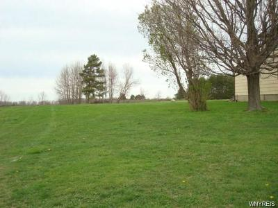 Orchard Park Residential Lots & Land A-Active: 7894 Milestrip Road