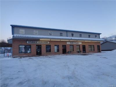 East Aurora NY Commercial A-Active: $349,000