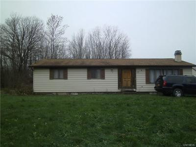 Niagara County Single Family Home A-Active: 2708 Quaker Road