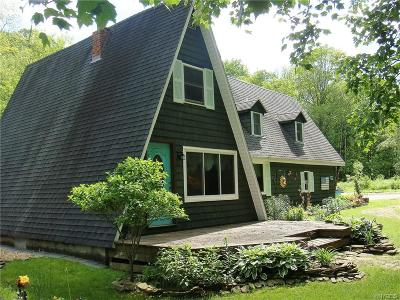 Cattaraugus Single Family Home A-Active: 11028 Scott Hollow Road