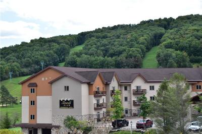 Ellicottville Condo/Townhouse A-Active: 306/308-4 Tamarack Club