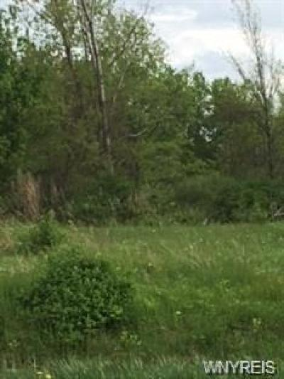 Genesee County Residential Lots & Land A-Active: Genesee Street