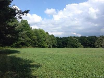 Pike Residential Lots & Land For Sale: 0 Vl Graham Road