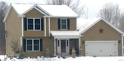 Lancaster Single Family Home A-Active: 00 Town Line Road