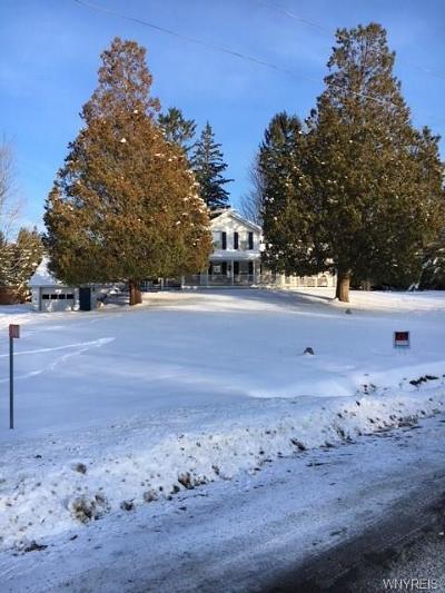 Little Valley Single Family Home U-Under Contract: 9468 Bucktooth Run Road
