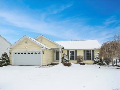 Lancaster Single Family Home U-Under Contract: 20 Stone Hedge Drive