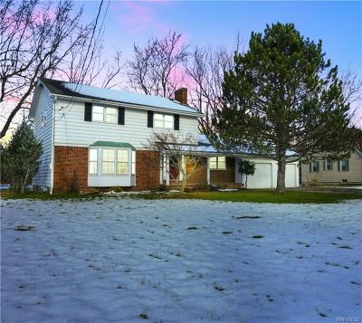 West Seneca Single Family Home A-Active: 736 Reserve Road