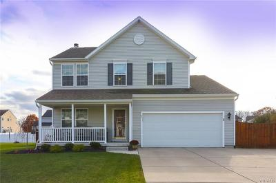 Lancaster Single Family Home A-Active: 5 Rose Street