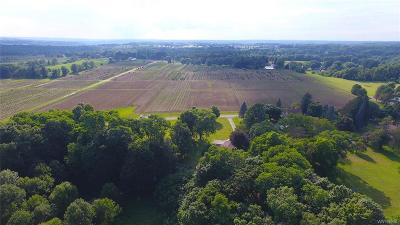 Erie County Residential Lots & Land A-Active: 13923 White Street