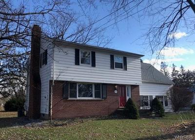 Lewiston Single Family Home P-Pending Sale: 230 North 4th Street