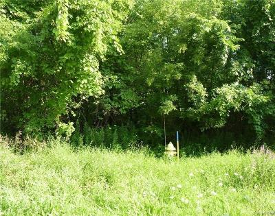 Niagara County Residential Lots & Land A-Active: Mapleton Road North