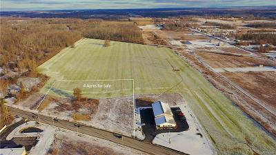 Niagara County Residential Lots & Land A-Active: 6411 Campbell Blvd