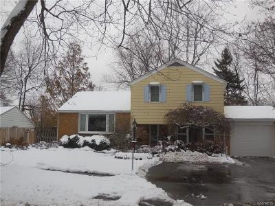 Amherst NY Single Family Home A-Active: $219,900