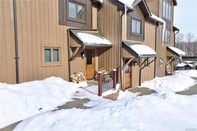 Ellicottville Condo/Townhouse A-Active: 28 Plum Ridge
