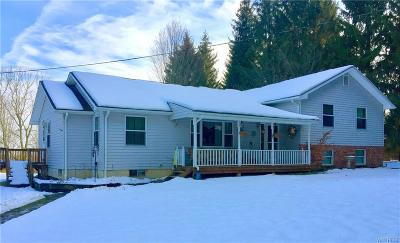 Cattaraugus Single Family Home A-Active: 9396 N Otto Road