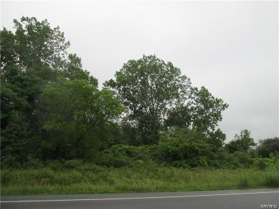 Niagara County Residential Lots & Land A-Active: 5629 Beattie Avenue