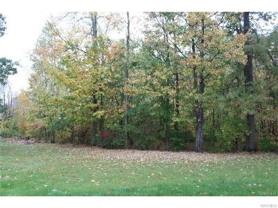 Niagara County Residential Lots & Land A-Active: 3137 Krueger Road