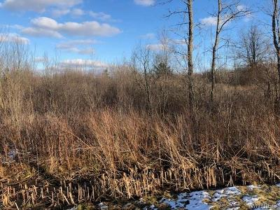 Erie County Residential Lots & Land A-Active: Vl 1 Alt Boulevard East
