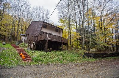 Ellicottville Single Family Home A-Active: 5504 Bryant Hill Road