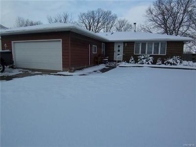 Single Family Home A-Active: 6095 Reger Drive
