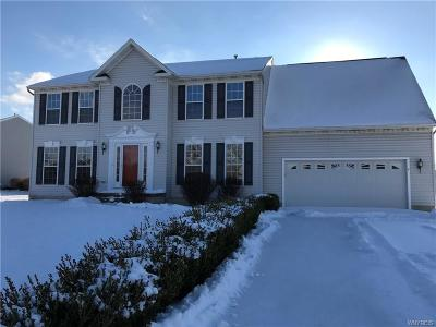West Seneca Single Family Home A-Active: 4 Cherokee Drive
