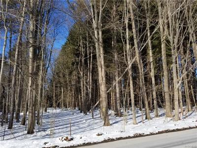 Erie County Residential Lots & Land A-Active: Mill Street
