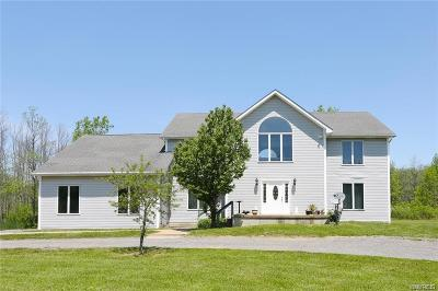 Erie County Single Family Home A-Active: 7748 Erie Road