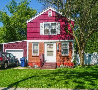 Niagara Falls NY Single Family Home A-Active: $125,000