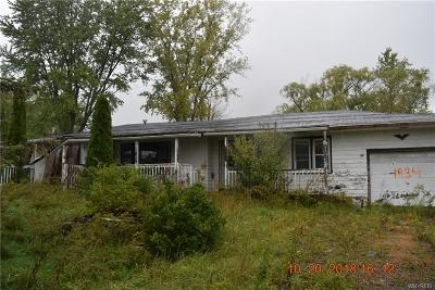 North Collins Single Family Home A-Active: 1834 Milestrip Road