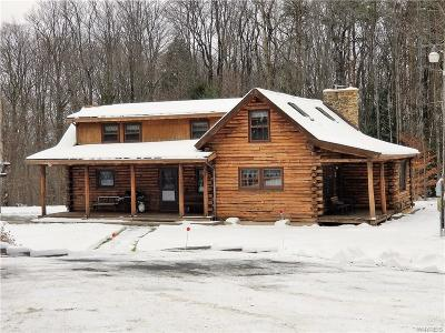 Erie County Single Family Home A-Active: 11094 Blanchard Road