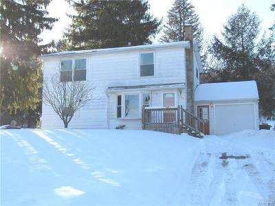 Erie County Single Family Home A-Active: 8970 Back Creek Road