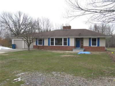Grand Island Single Family Home A-Active: 1220 Staley Road