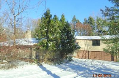 Orchard Park Single Family Home A-Active: 6626 Milestrip Road