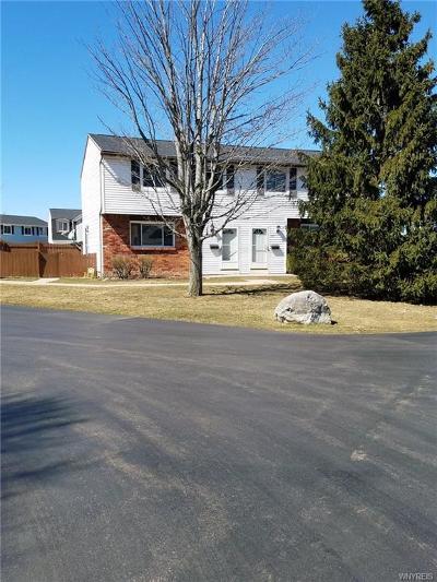 Lancaster Condo/Townhouse A-Active: 50 Parkview Court