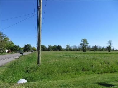 Niagara County Residential Lots & Land A-Active: Old Beattie Road